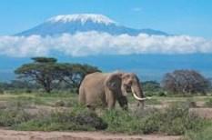 le-kilimandjaro-tanzanie