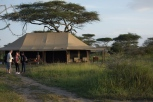ndutu-tented-camp