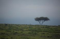 tanzania-landscape-9
